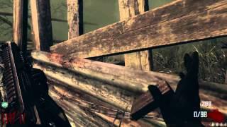 Call Of Duty II Zombies