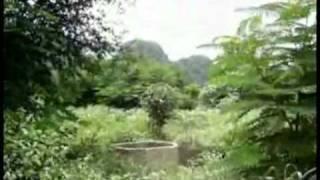 Zos Vaj Loog Tsua 22 - Xyoo 2007 ( Hmong Wat Tham Krabok )