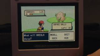 Hello all! Somehow I've managed to find my 4th Shiny Chansey in the Safari Zone! I honestly don't have any words to explain how insane this is! This is my 2nd shiny today as well, since I found my Exeggcute at 2 am earlier this morning! Did I catch this Chan, or did this BIG girl leave me? Whom knows!