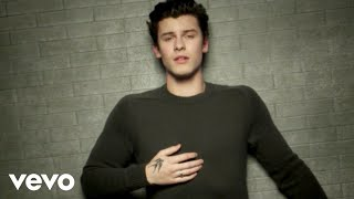 Video Shawn Mendes - In My Blood MP3, 3GP, MP4, WEBM, AVI, FLV Mei 2018