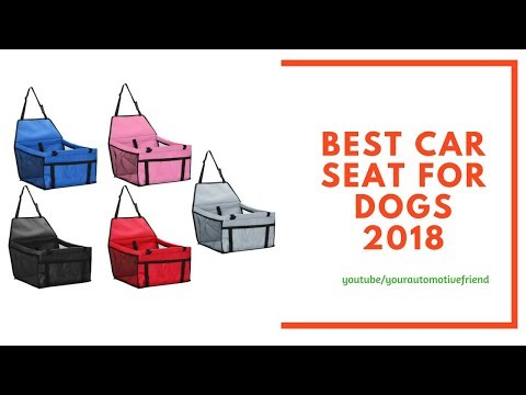 Best Car Seat For Dogs 2018