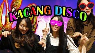 Video KACANG DISCO bikin Cewek korea NGDISCO!! #2 MP3, 3GP, MP4, WEBM, AVI, FLV Oktober 2017