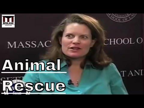 Warum erlassen ein Haustier aus Obdach?
