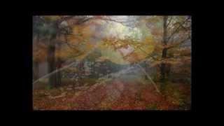 Video Podzimní karneval - Janek Eret trio