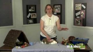 Rabbit Care - Basic Health Considerations for your Rabbit