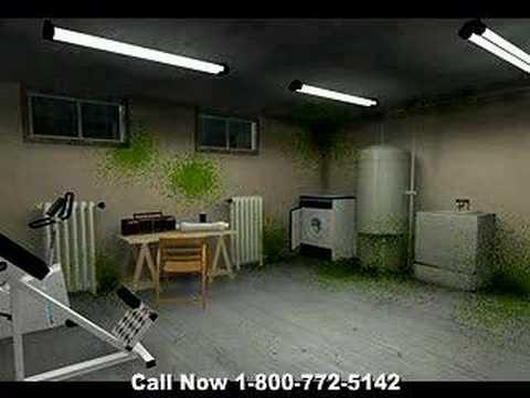 Kill Mold – Mold Kill, Kill Toxic Mold with Ozone Generator
