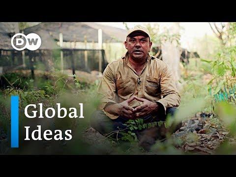 Kolumbien: Können Umweltschäden durch Geld behoben werd ...