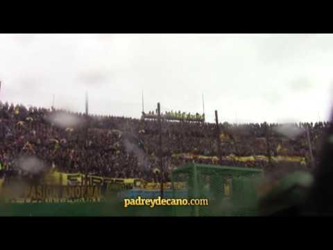 Hinchada peñarol padreydecano - Barra Amsterdam - Peñarol
