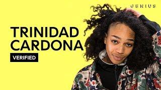 Download Lagu Trinidad Cardona Jennifer Official Lyrics & Meaning | Verified Mp3