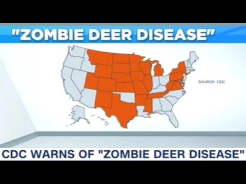 """CDC Issues Warning About """"ZOMBIE DEER DISEASE"""""""