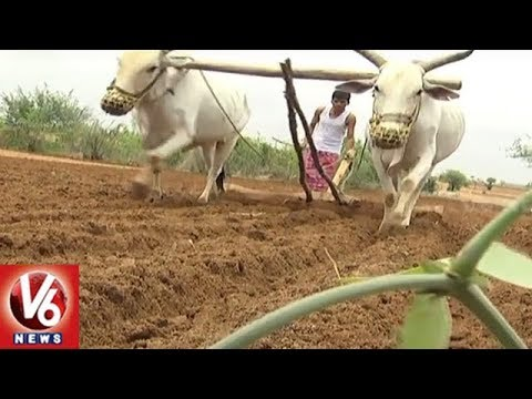 Special Story On Mahbubnagar District Farmers Farming Tools | V6 News