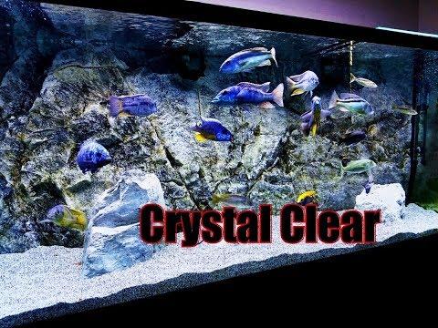 Crystal Clear Aquarium Water....Time To Show It Off!! Plus Some Changes_Akvárium