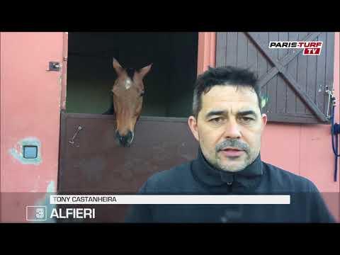 Quinté vendredi 19/01 : « Alfieri (3) s'est très bien comporté dernièrement »