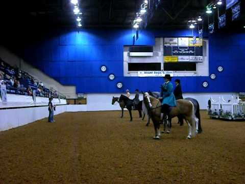 Roanoke Valley Horse Show - 18+ Trail Racking Line Up