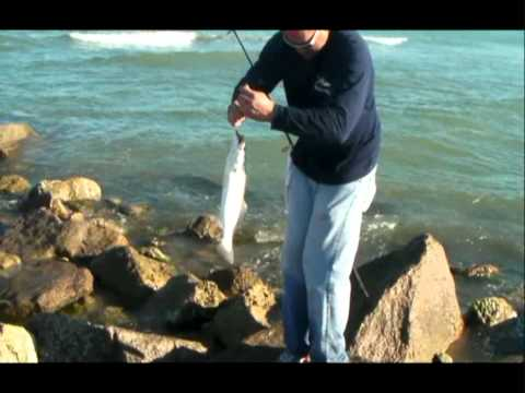 Day of the TROUT! – Feb 2011