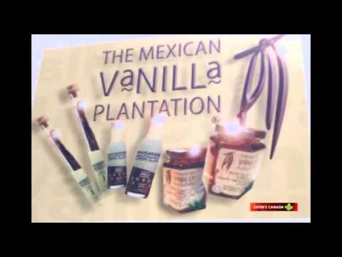 Mexican Vanilla Plantation – Magic Beans!