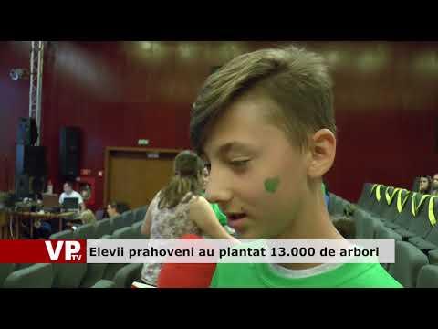 Elevii prahoveni au plantat 13.000 de arbori