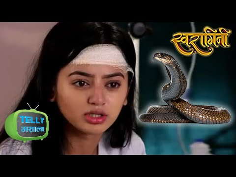 Swara ATTACKED by a SNAKE? | Swaragini |