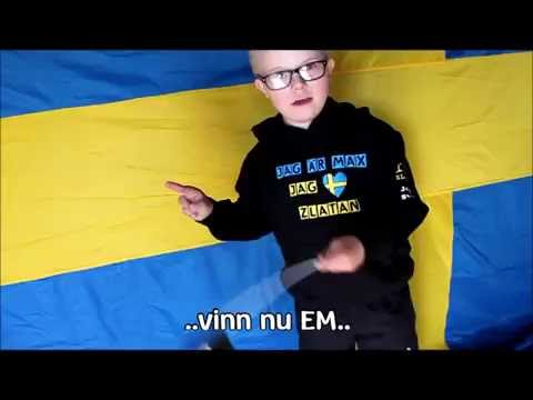 Watch video Heja Heja Sverige