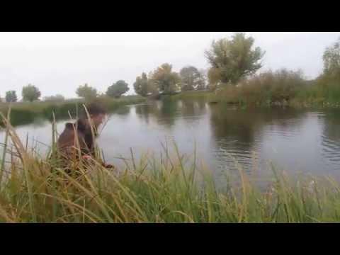 рыбалка хутор громов астраханская