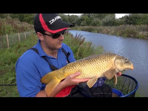 Pole Fishing For Carp On Stillwater Canals & Snake Lakes, Rigs, Tips & Tactics