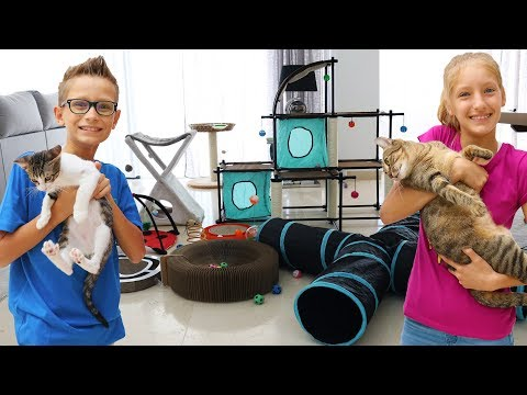 Testing Cat Toys On Our Cats!!!!