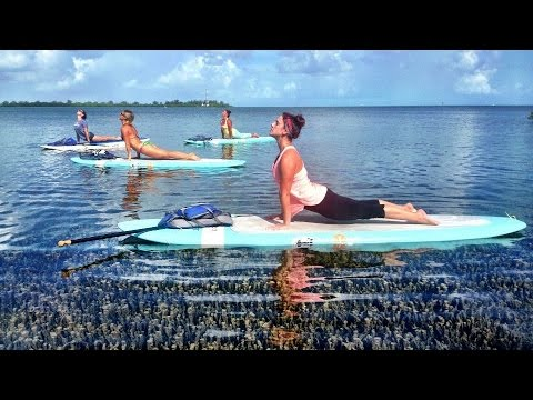 Paddleboard Yoga in the Florida Keys