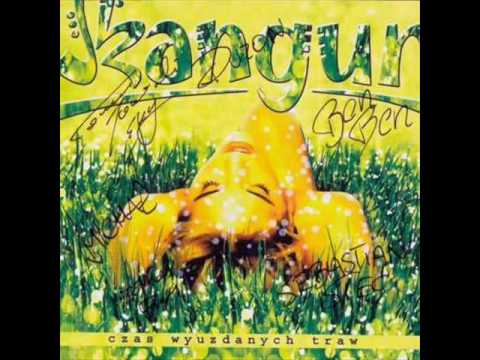 Tekst piosenki Skangur - Czas wyuzdanych traw po polsku