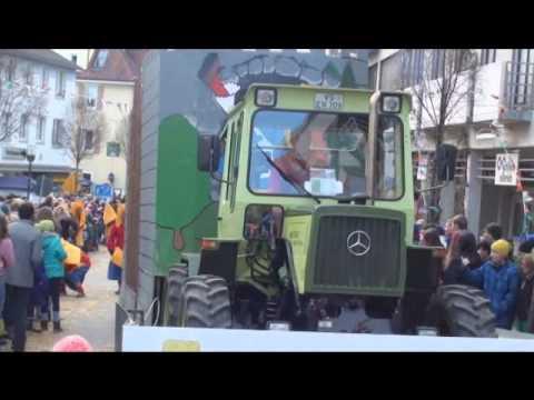 Narrentreffen Donaueschingen 09.02.2014 4/5 (видео)