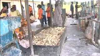 Niger - Nigeria's Agriculture Hub