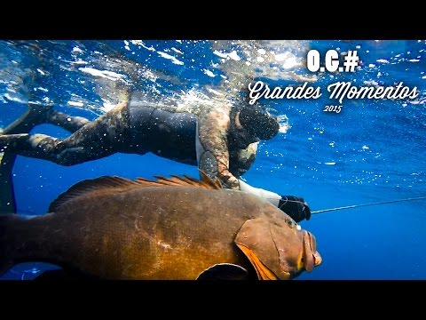 Pesca submarina. O.G.# Grandes Momentos 2015