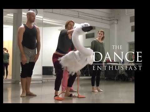 "New York Dance Up Close: A Minute of Allegra Kent's ""Ballerina Swan"""