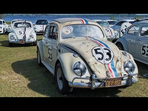 Celebrating 50 Years of Herbie The Love Bug