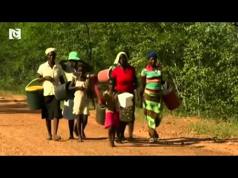 Up to 4 million Zimbabweans face hunger because of poor harvests during a harsh drought induced by El Nino weather, as the government declares a state of national disaster and appeals for food aid.