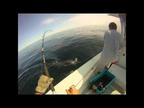 Tuna Fishing Cape Cod for 1,000 Pound Giants | The 2nd Episode of Discovery Channel's Fighting Tuna