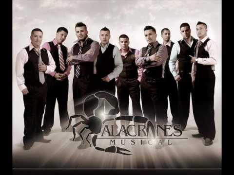 0 Video Vivo en tu Piel   Alacranes Musical