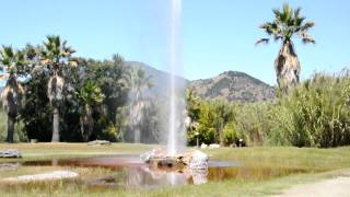 Calistoga (CA) United States  city pictures gallery : Old Faithful Geyser, Calistoga, CA USA