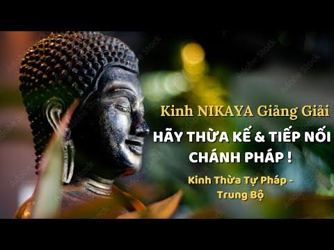 Kinh NIKAYA Giảng Giải - Hãy Thừa Kế & Tiếp Nối Chánh Pháp ! (Kinh Thừa Tự Pháp - Trung Bộ)