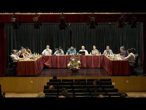 Pleno Xullo de 2017