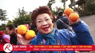 Ruby Travel Chiangmai -ลูกค้าท่องเที่ยวเกาหลี เกาะเชจู