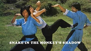 Video Wu Tang Collection - Snake In The Monkey Shadow MP3, 3GP, MP4, WEBM, AVI, FLV Juli 2018