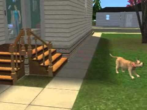 The Sims 2 - how to control pets