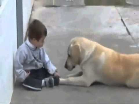 l'amore di un cane non ha preferenze...bimbo down e labrador retriever!