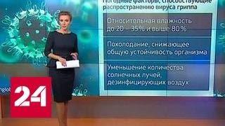 """""""Погода 24"""": грипп возвращается"""