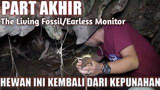 Video THIS EARLESS MONITOR HAS RISEN FROM EXTINCTION!!! EXPEDITION OF THE NATIONAL BORDER/ DINAL PART MP3, 3GP, MP4, WEBM, AVI, FLV Agustus 2019