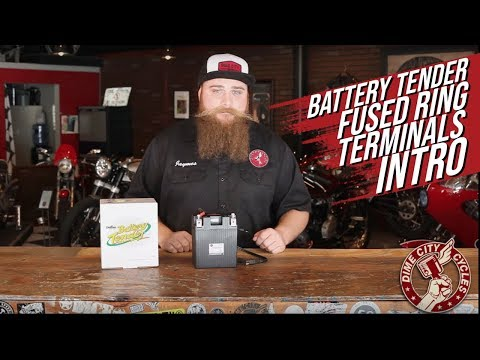 Battery Tender Fused Ring Terminals INTRO