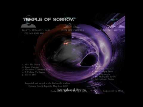 "Temple of Sorrow - TEMPLE OF SORROW - Silicon Hell ""2007"""