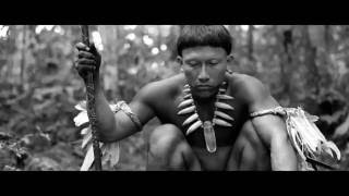 Embrace Of The Serpent Official Trailer   2016  Hd