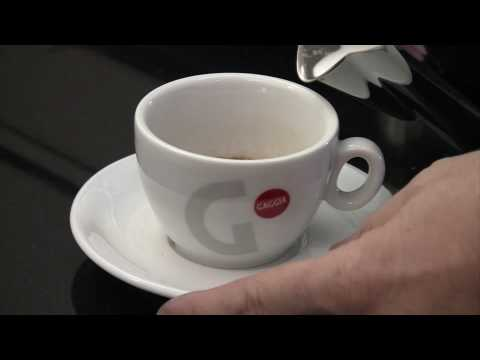 Preview of the Gaggia D90 Evolution