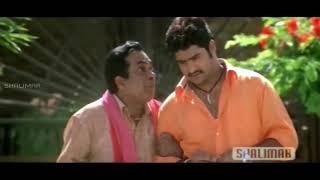 Jr. NTR, Brahmanandam, Venu Madhav || Telugu Movie Scenes || Best Comedy Scenes || Shalimarcinema
